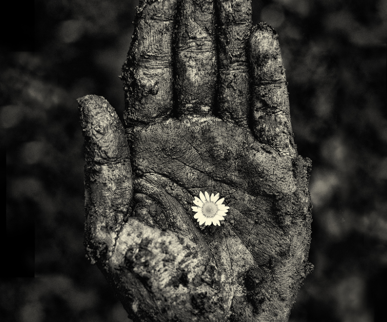 Seeds of Hope in the Unknown