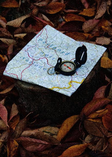 Navigating Multiple Worlds